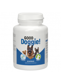 Good Doggie! – dobre...