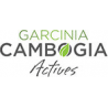 Garcinia Cambogia Actives